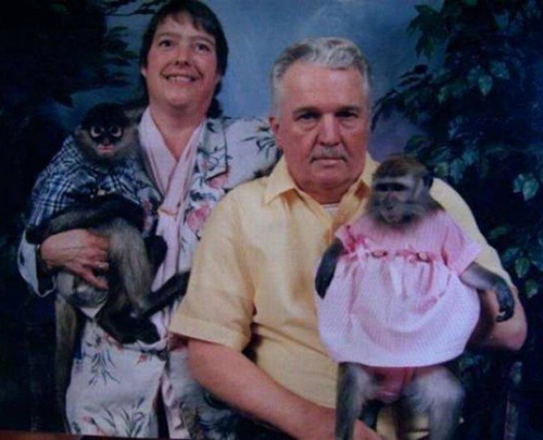 Money Parents, Moneky kids, portrait with monekys Bad Family Phots Funny Family Photos Worst Family Pictures weird family strange awkward family photos funny pictures crazy family