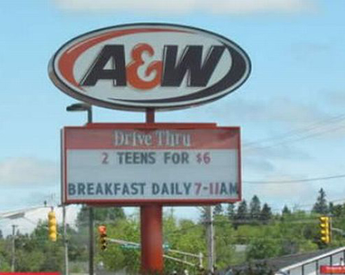 Funny Clean Names: Funny Signs Vol V: 16 More Bad Head Shakers