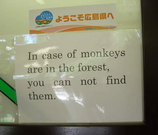 funny signs lost in translation bad english in case of monkeys
