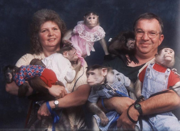 Awkward funny portrait of couple with monkey babies