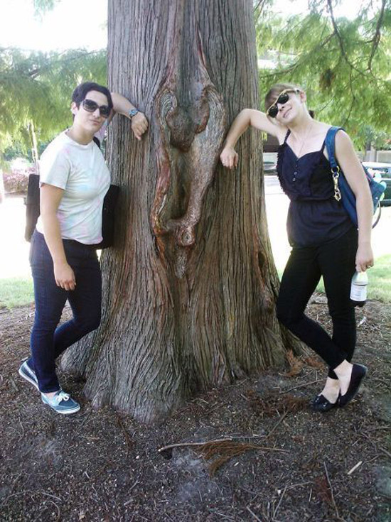 two-woman-tree-looks-like-vagina-awkward-family-photos