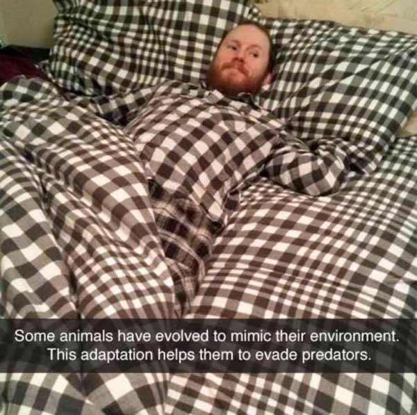 Funny Snapchats ~ pajamas matching bed sheets