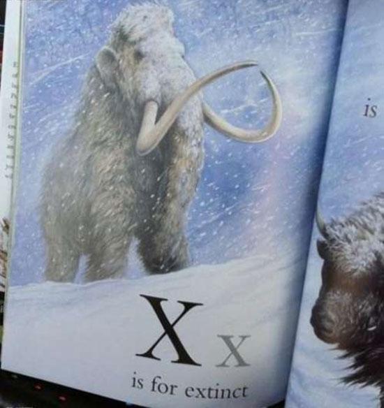 Children's alphabet book: X is for extinct mastodon ~ Funny You Had One Job Fails