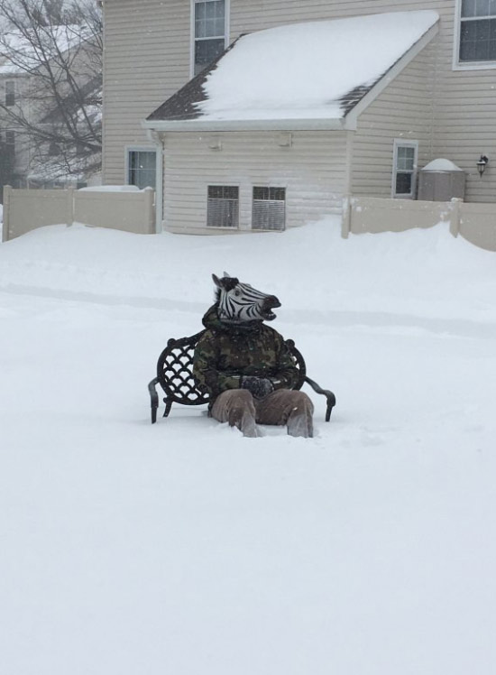 Funny Pictures: man in zebra head mask sits on park bench in the snow