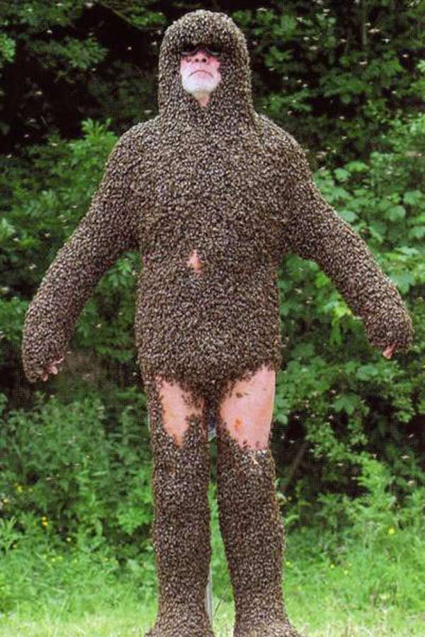 man covered in bees funny awkward family photos