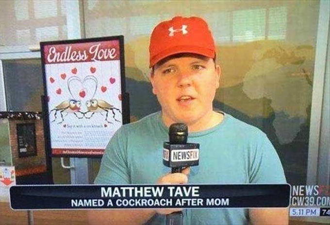 Funny Pics & Memes ~ New story fail, Matthew Tave named cockroach after mom