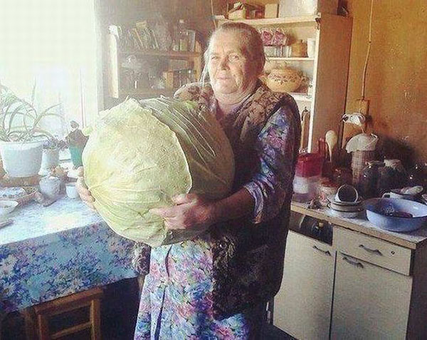 27 Funny Family Photos & Vintage Snaps ~ grandma with giant cabbage