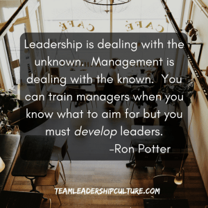 team-leadership-culture-meme-9