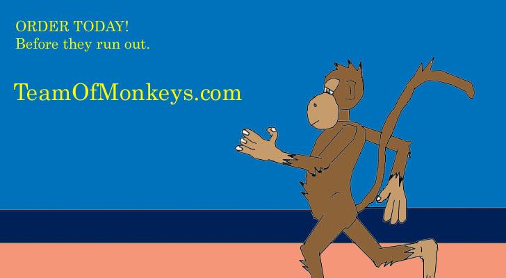Monkey Running On The Beach