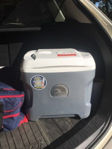 Electric Travel Refirgerator