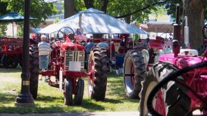Photo of a grove of tractors