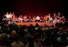 Teatre critic als instituts