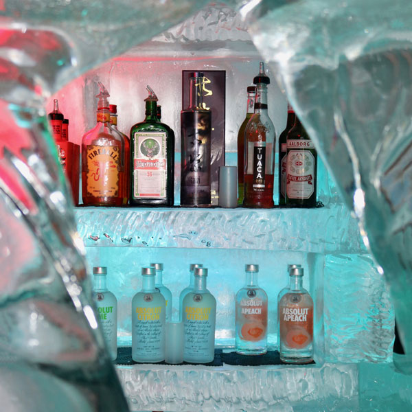 Minus 5 Ice Bar Details