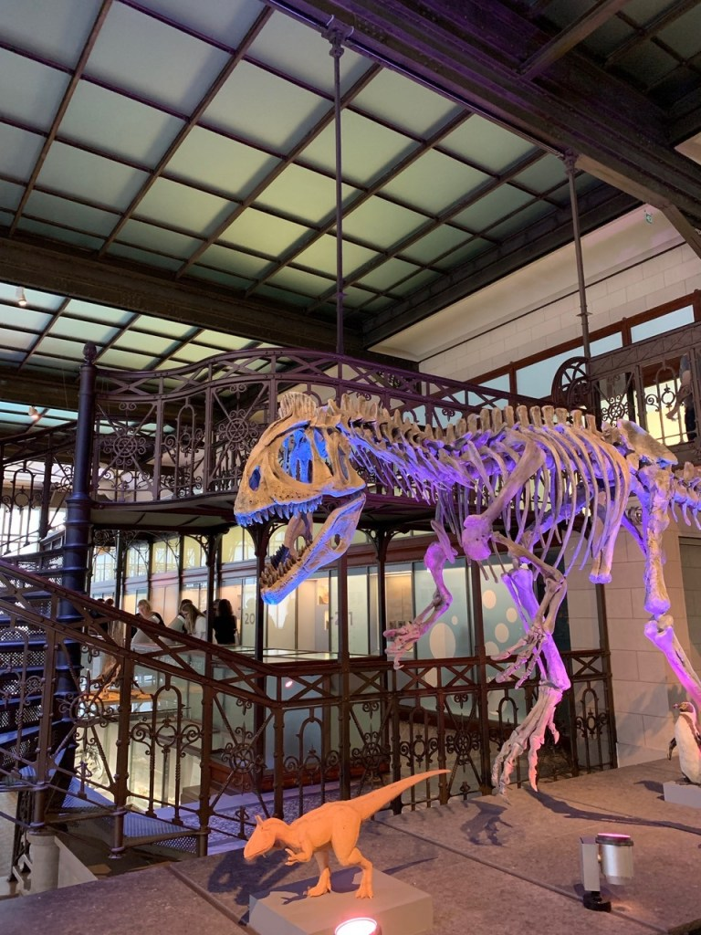 Ben and the dinosaur hall