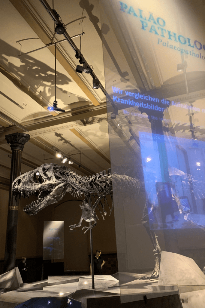 Information and video screens, Museum für Naturkunde, Berlin