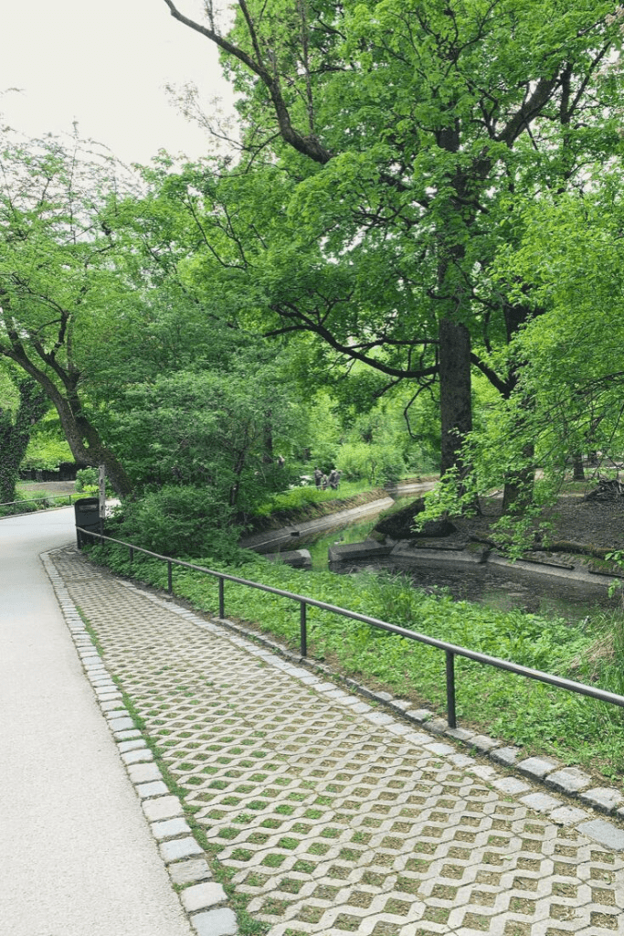 Just an example of how green Hellabrunn Tierpark is. Munich zoo is cool and inviting even on the hottest days.