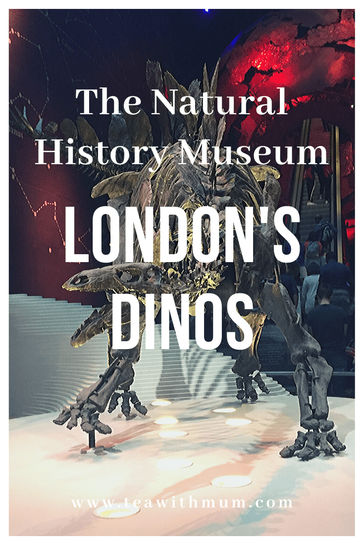 London's dinos: a visit to the Natural History Museum in Kensington - amazing, crowded and limited interaction - check out our review