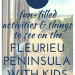 25+ fun-filled activities and things to see on the Fleurieu Peninsula with kids; tips from a local; with image of the Cockle Train and views of the sea