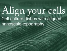 Align your cells - NanoSurface Biomedical at tebu-bio
