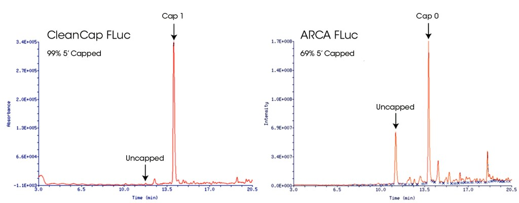 Capping of mRNA using CleanCap or ARCA