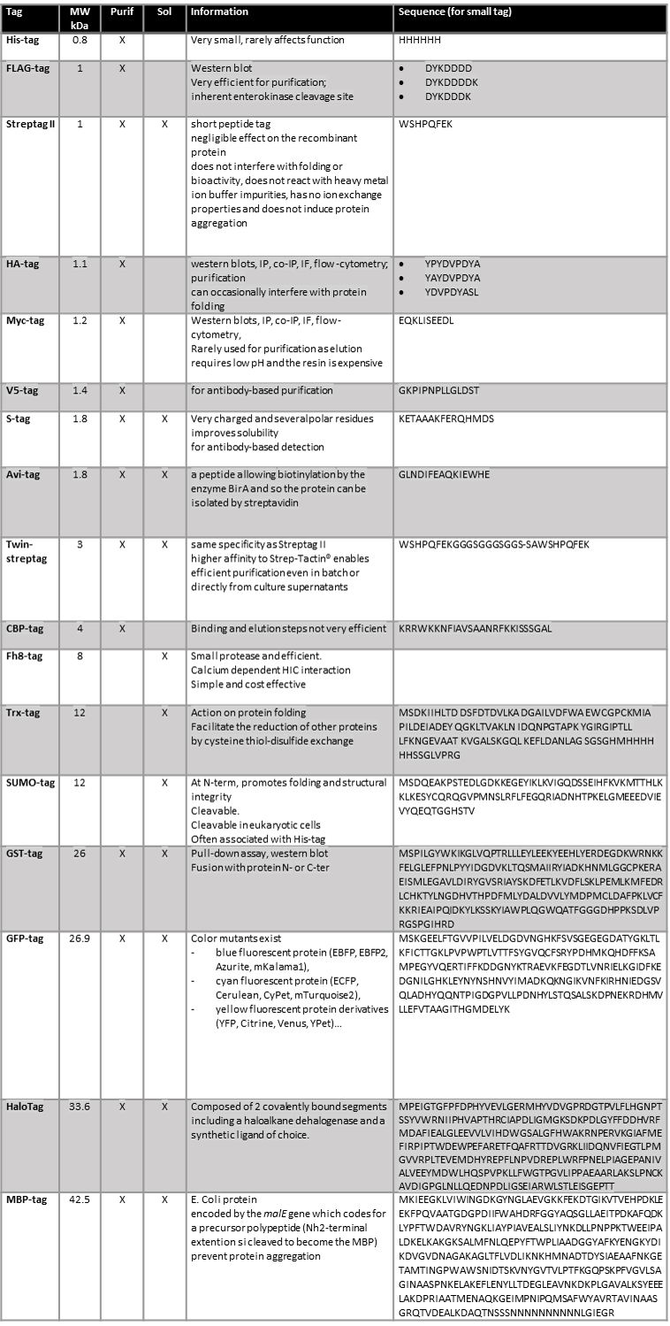 Tab. 1: A non-exhaustive list of useful protein tags (source of information proposed by Isabelle Topin).