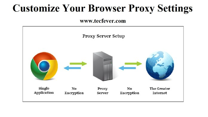 Customize Your Browser Proxy Settings