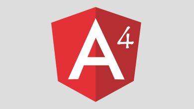 Photo of Angular 4