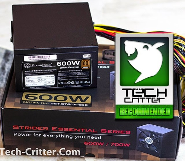 Unboxing & Overview: Silverstone Strider Essential 600W 13