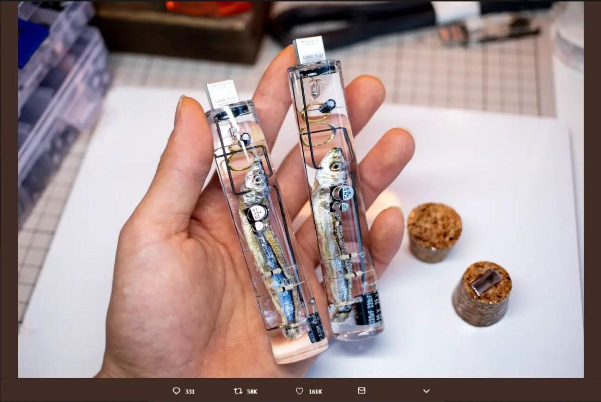 Japanese Made Fish Brain USB Flash Drive Explained