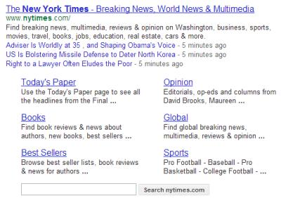 google-sitelink-site-search