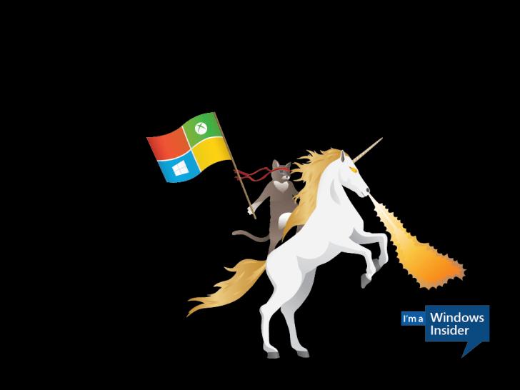 Ninjacat_Unicorn