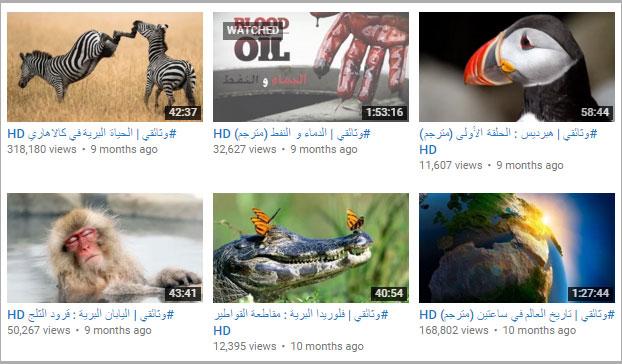 oa_doc_youtube_3
