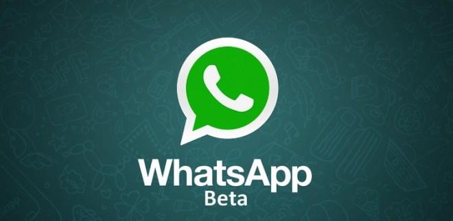 أحدث نسخة بيتا من واتساب على ويندوز فون يدعم دعوة الأشخاص للمجموعة عبر رابط