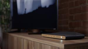 Wood with TV