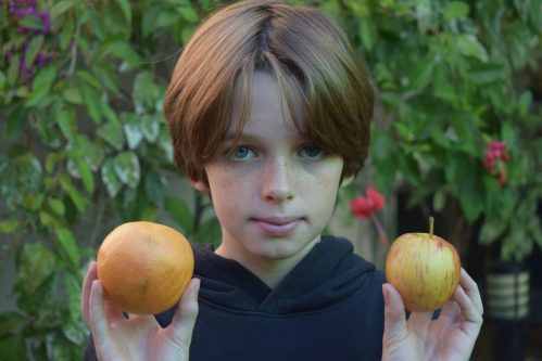 image of young boy holding up a piece of fruit in each hand