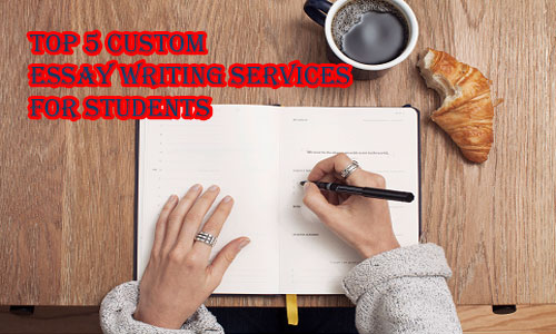 Us based essay writing service picture 1
