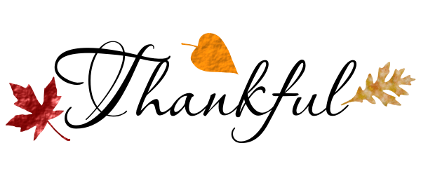 Many Things to Be Thankful for in 2016
