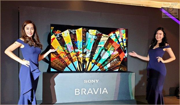 The 2019 Sony BRAVIA OLED + LED TV Line-Up Revealed!