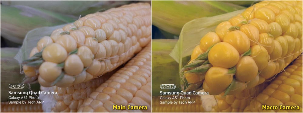 Samsung Galaxy A51 camera comparison : main camera vs macro camera