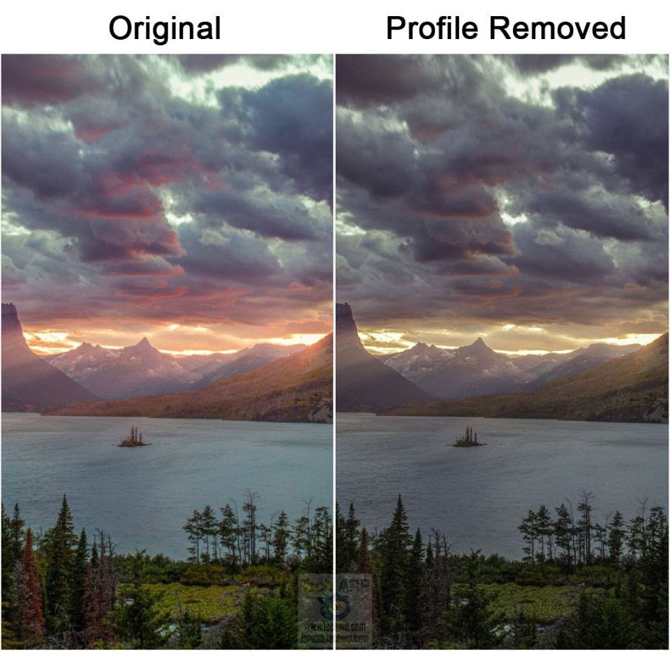 Android Wallpaper Malware Ori vs Profile Removed