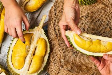 Can You Eat Durian Before / After COVID-19 Vaccination?
