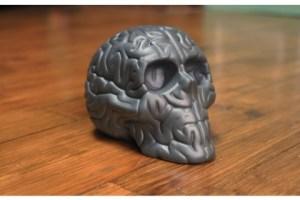 skullbrain