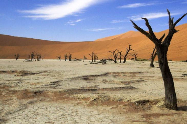 Climate Change - Africa Opportunities