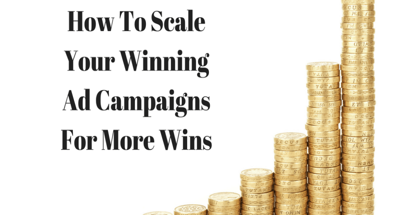Image result for How to scale an ad campaign