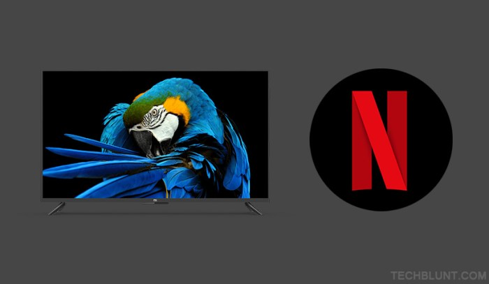Netflix not working on Mi TV