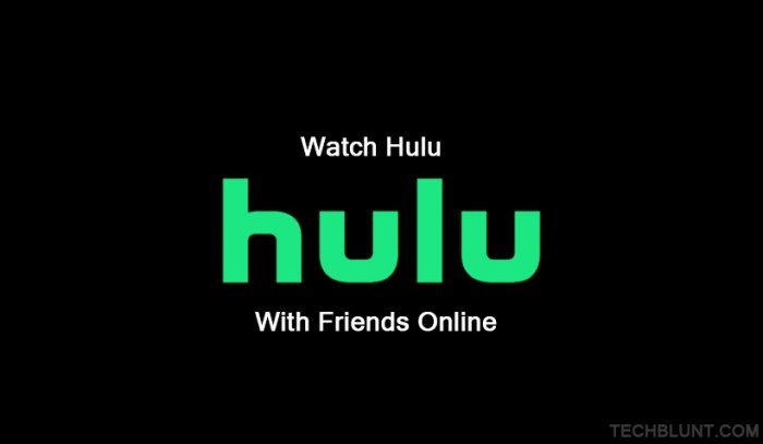Watch Hulu with friends online