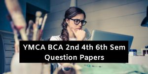 YMCA BCA 2nd 4th 6th Sem Question Papers