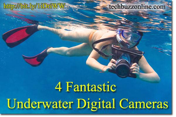 4 Fantastic Underwater Digital Cameras