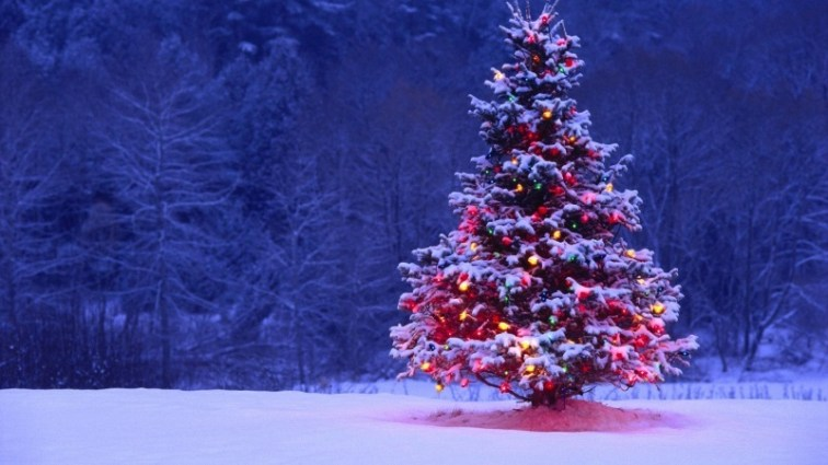 Christmas Tree with Colorful Lights