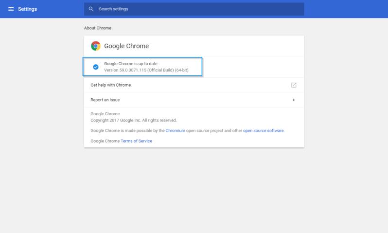 Chrome Version Settings